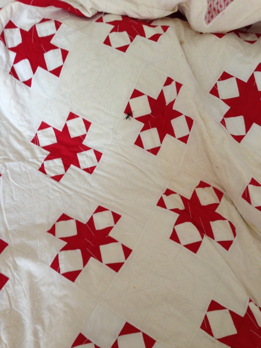 Turkey Red and White Star Quilt